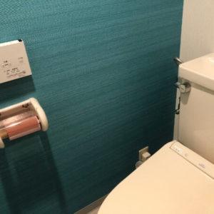 トイレのアクセントクロス/1面だけターコイズブルー青に1